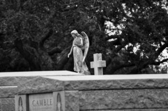 cemetery (6)